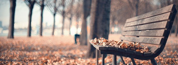 Bench By Autumn Facebook Covers