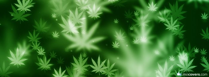 Cannabis marijuana Facebook Covers